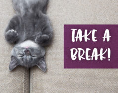 Take a break! featured image