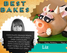 Best Bakes: Meet the judges… featured image removed