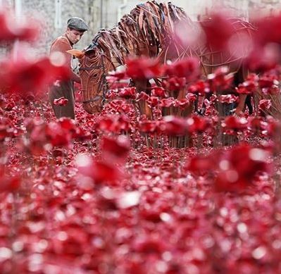 A photo of War Horse at the Tower of London commemorating the WW1 100th Anniversary
