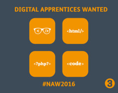 Wanted: Apprentice Website Developers featured image