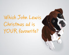 Which John Lewis Christmas ad is your favourite? featured image