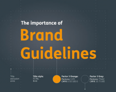 The importance of brand guidelines blog post image